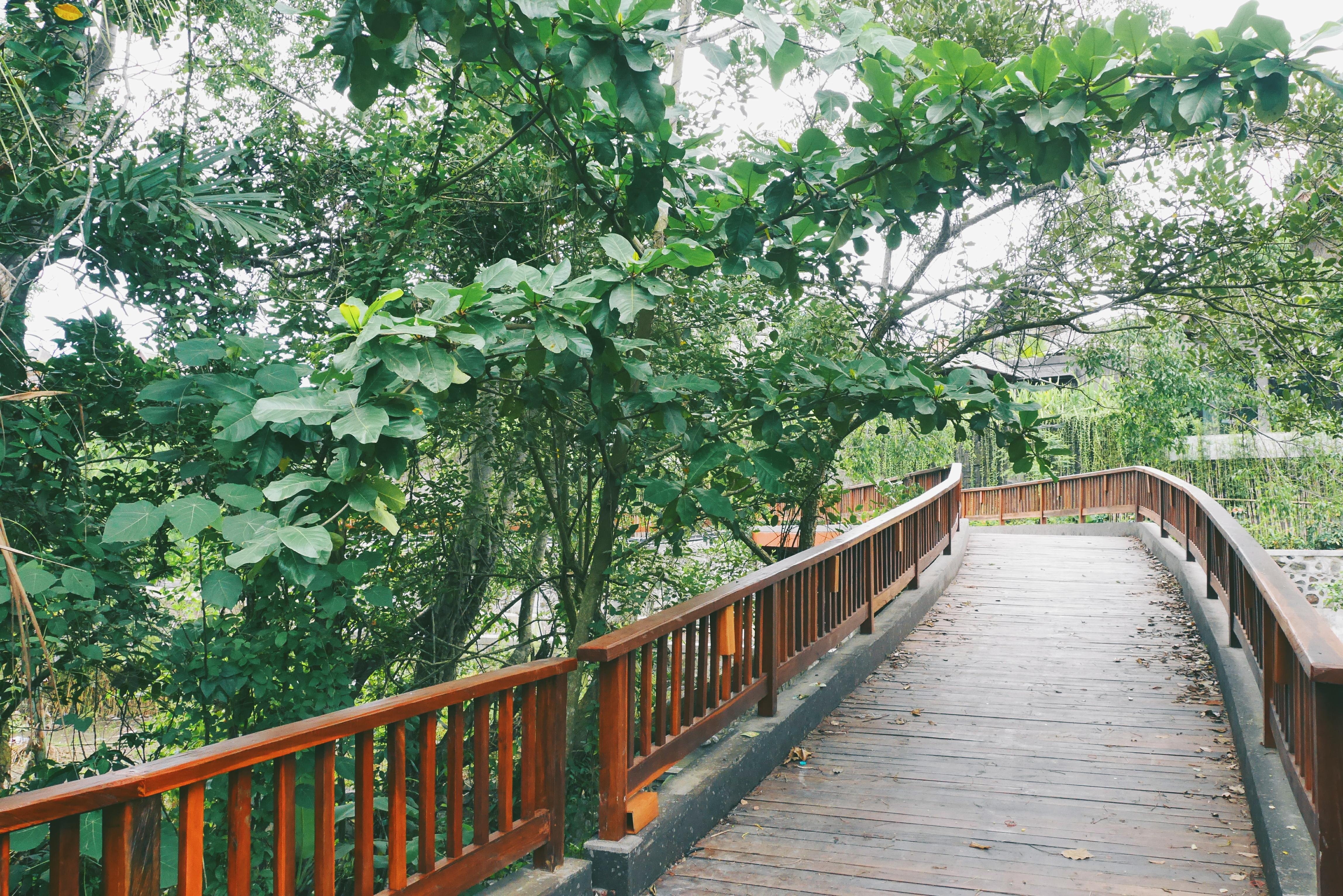 Jembatan Kayu menuju Ruang Spa