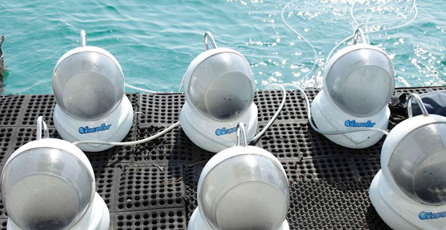 Helm untuk Seawalker